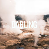 Zerbin Darling Cover