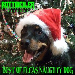 Best of Fleas Naughty Dog